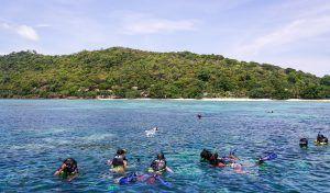 Elegir un buen seguro para actividades en Tailandia